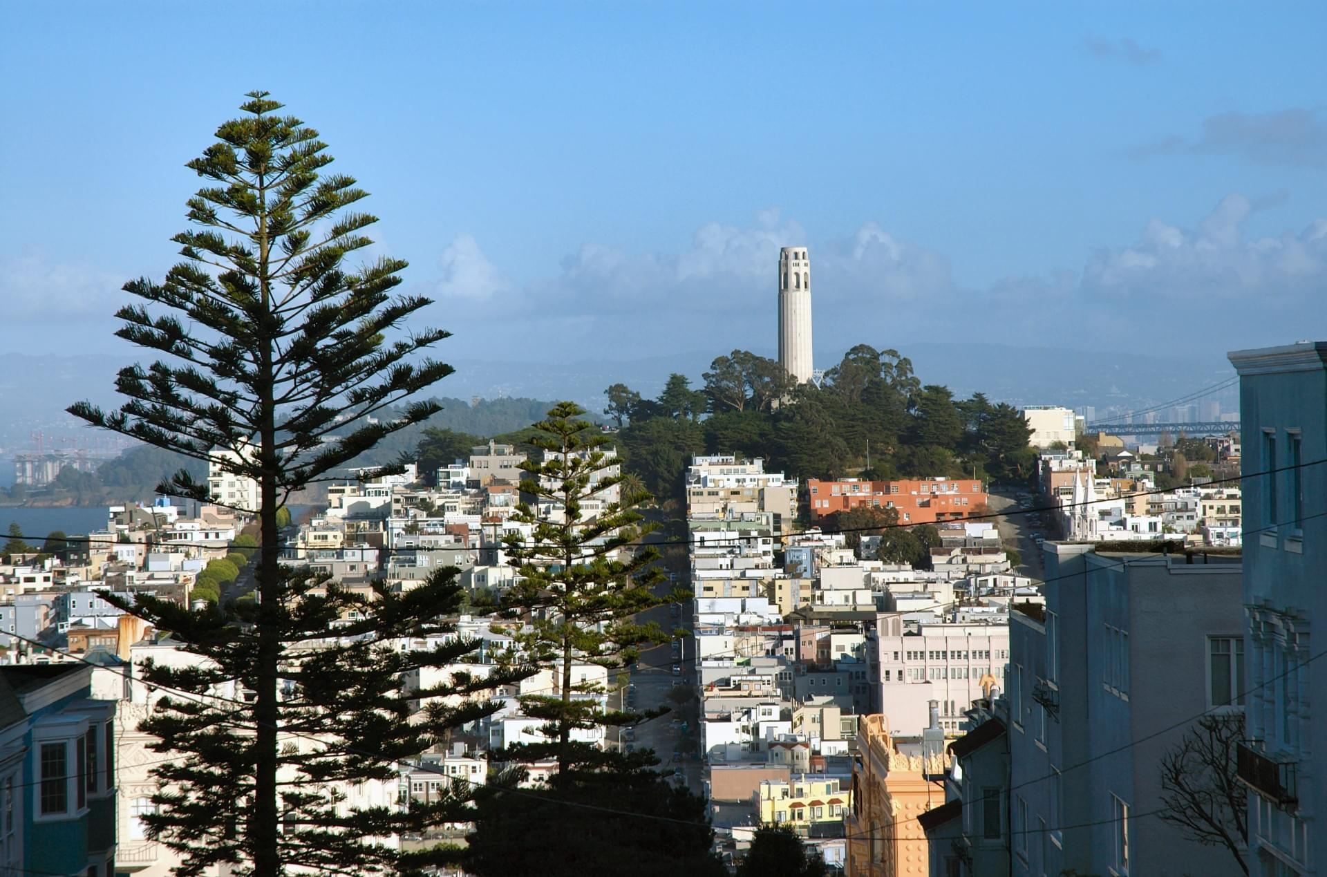 Telegraph Hill / Coit Tower