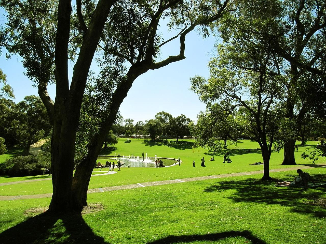 Kings Park et le jardin botanique - Kings Park and Botanical Gardens - Perth