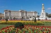Buckingham Palace from gardens, London, UK - Diliff