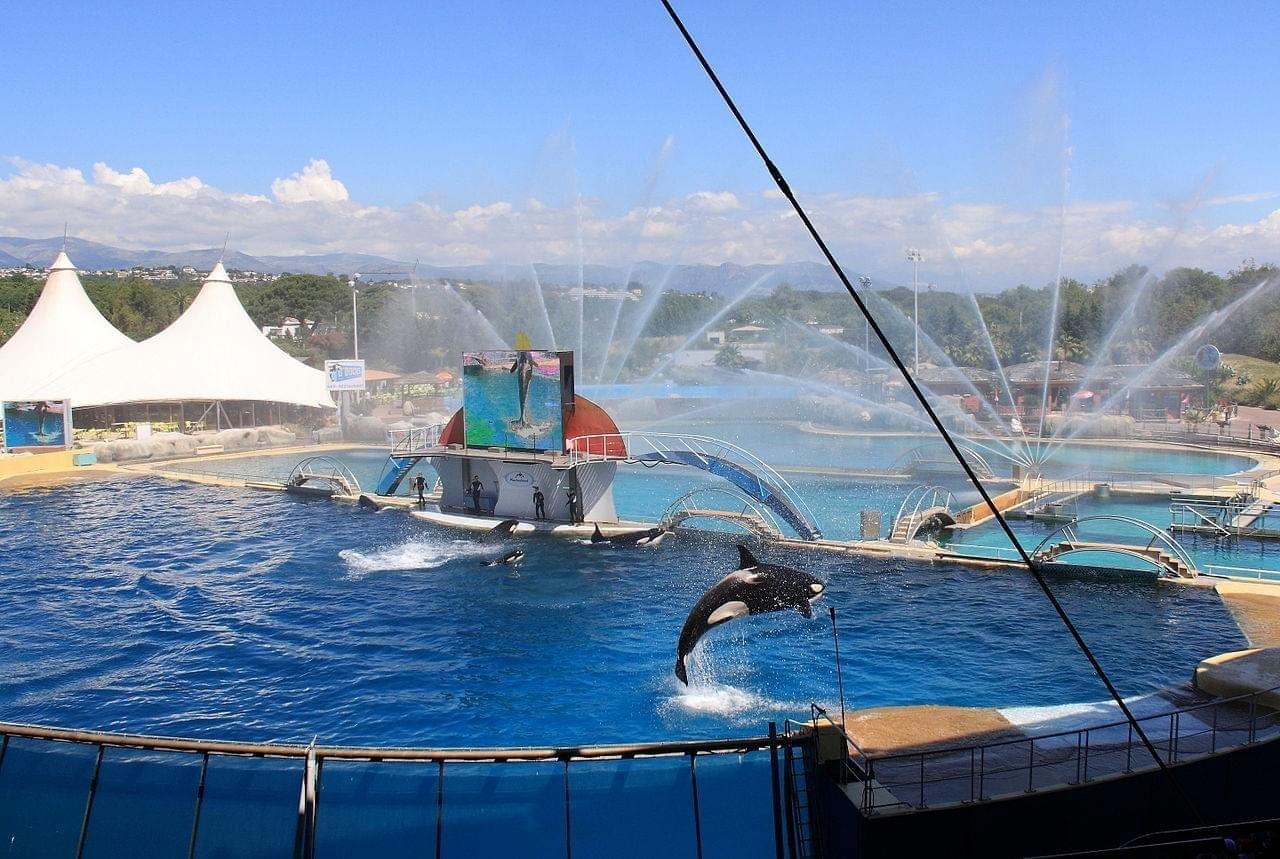 Photo Marineland