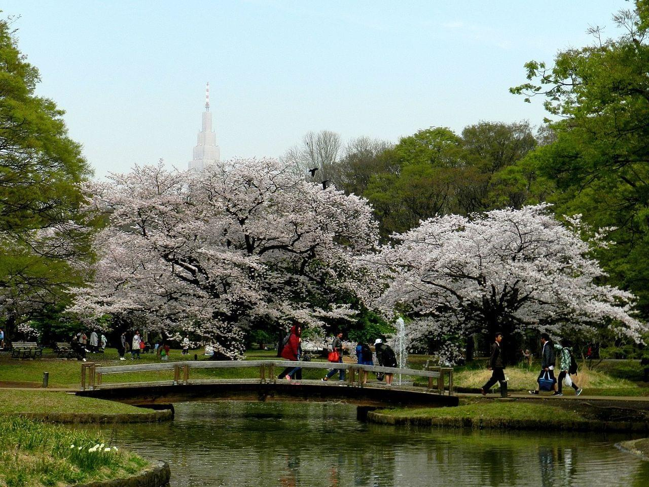 Photo Parc Yoyogi