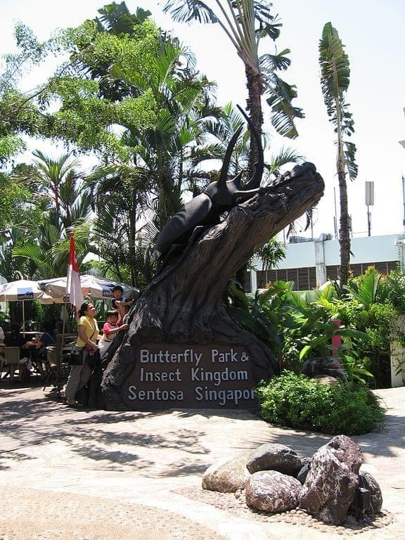 Photo Butterfly Park and Insect Kingdom