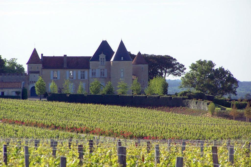 Photo Château d'Yquem