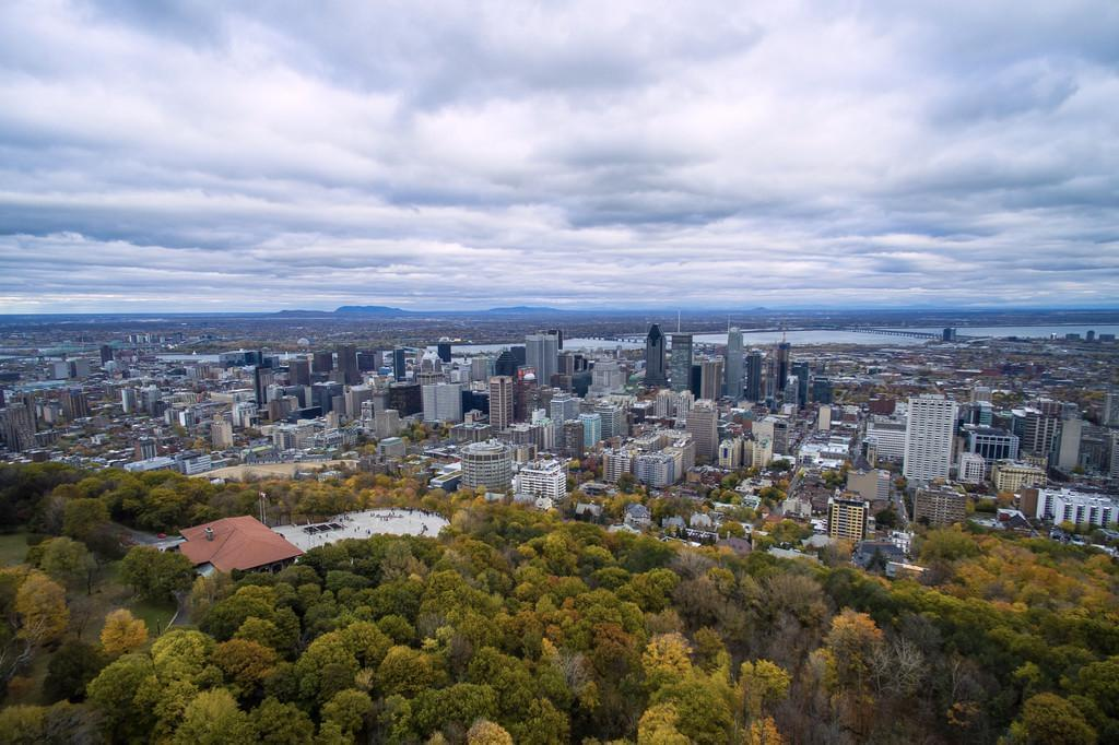 Photo Le parc Mont-Royal, véritable poumon vert de la ville de Montréal