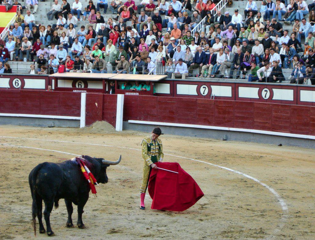 Photo Assister à une corrida à Madrid
